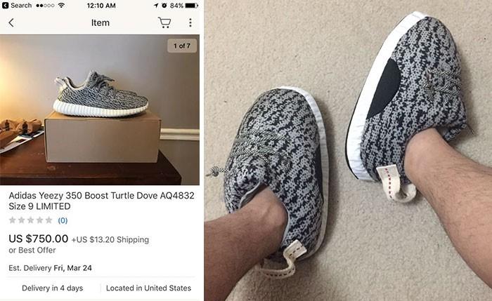 shoe, online shopping, funny, dollars