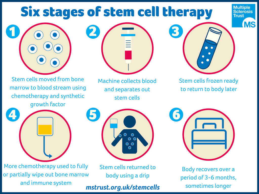 Stages in Stem Cell Therapy